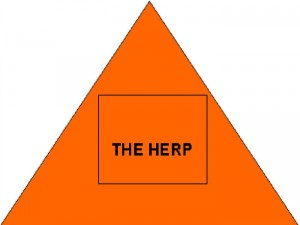 Herpes Triangle Five Bars One Mission